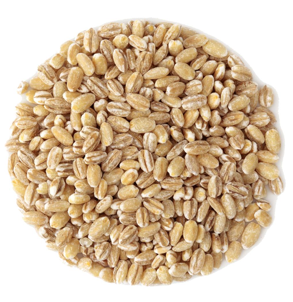 barley png - photo #10