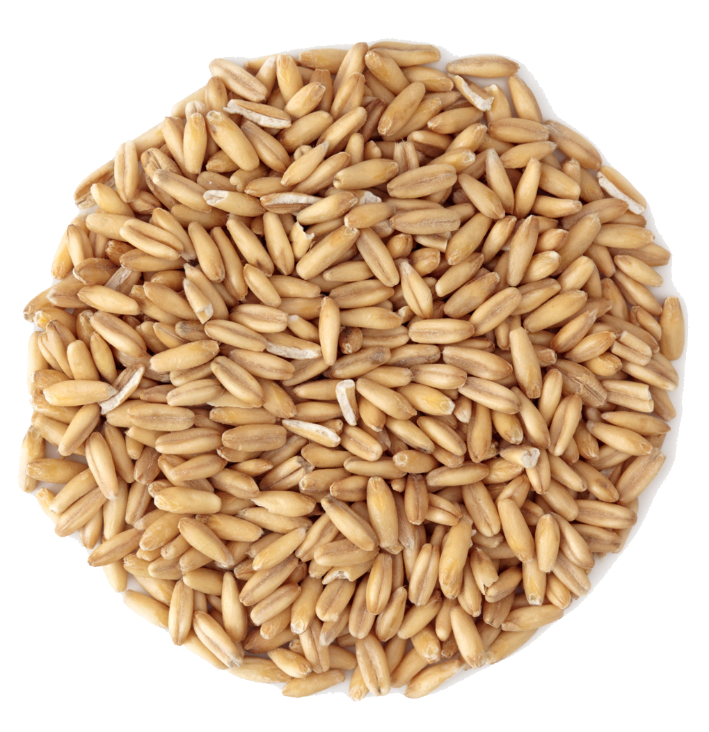 small pile of grain