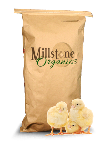 Organic Chicken Feed Organic Feeds Mcgeary Organics